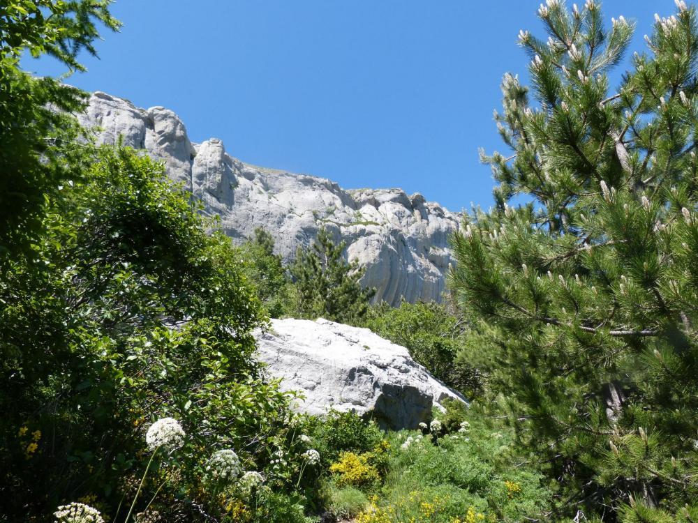 La falaise de Céüze, encore quelques mètres !