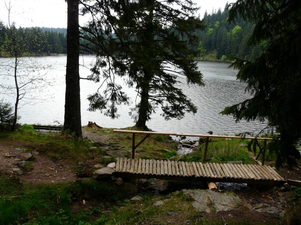 Le lac vert pas très loin du Tanet - Schlucht (88)