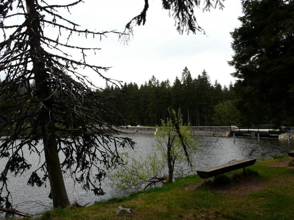 le barrage du lac vert