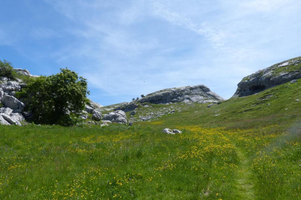 Reedscente vers le col des Guérins en prenant le vallon d'Aiguebelle qui suit en parallèlle la corniche