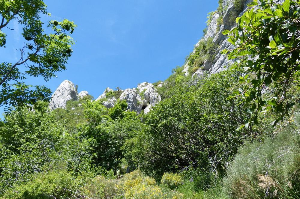 Vue rétro sur la sente de descente de la cascade (accès au pic de Céüze par le couloir ouest