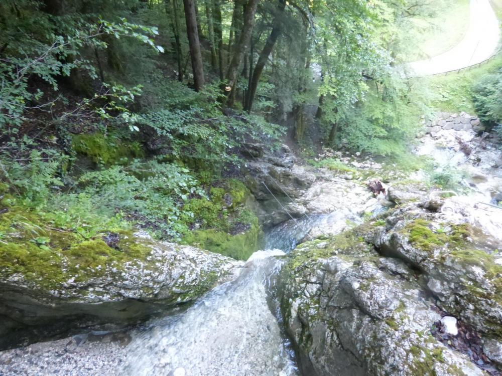 le pont de singe de la cascade des Nants vu en contrebas