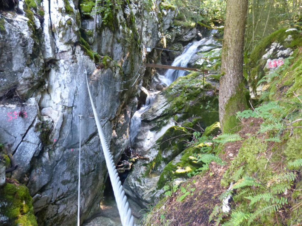 Pour finir, un petit pont de singe  en cadeau (!) à la via de la cascade à bellevaux