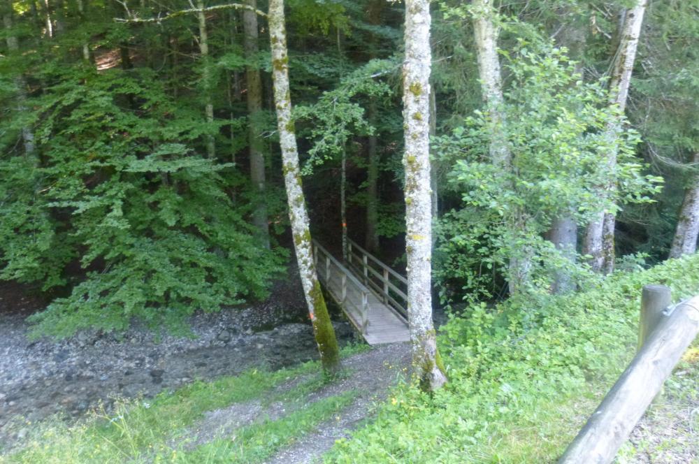 passerelle d'accès au parc aventure et au sentier qui mène au pont couvert