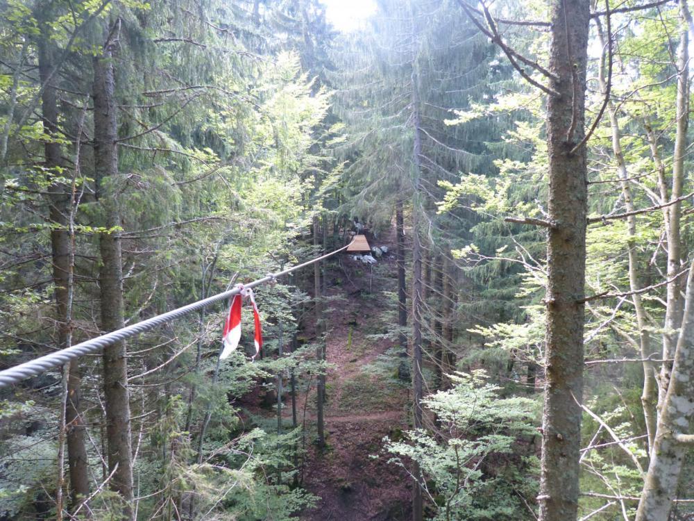 Belle tyrolienne en forêt quoique très similaire aux tyroliennes des parcs aventure (?)