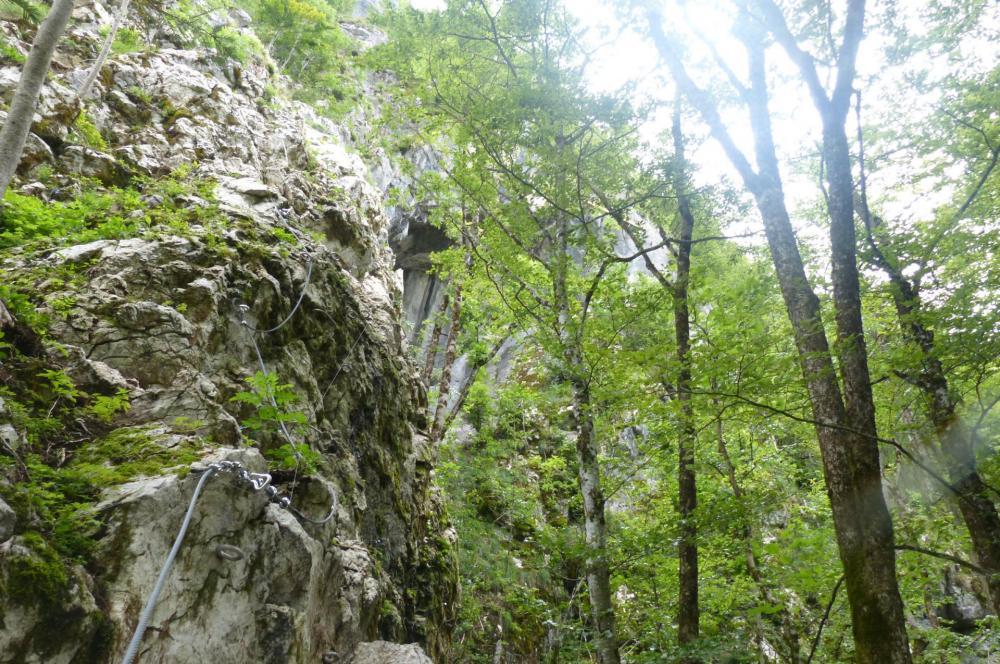 Via ferrata de la grotte de cristal à Bellevaux, première partie verticale et sans difficulté en forêt