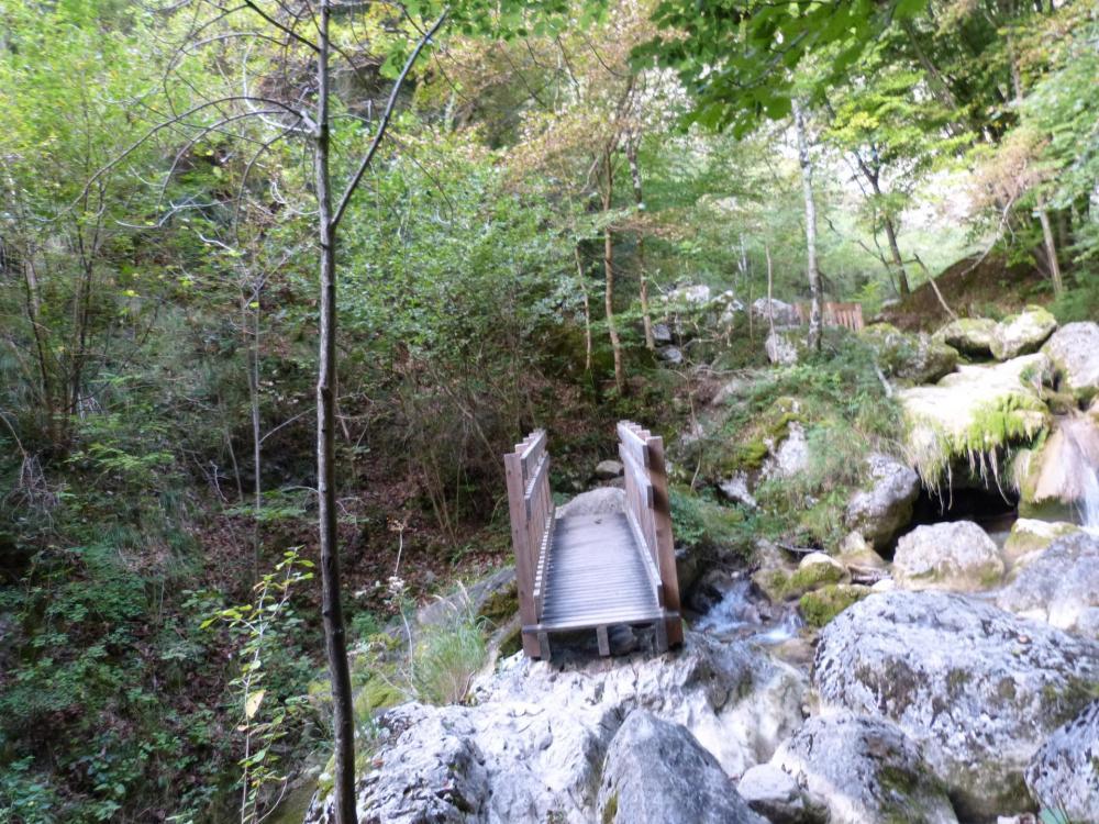 les passerelles sur le torrent-ruisseau de  l' alloix