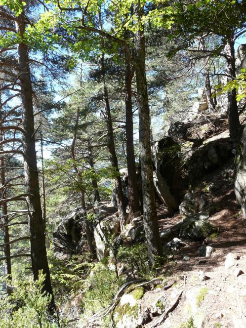 le chemin de retour du roc d'Esquers