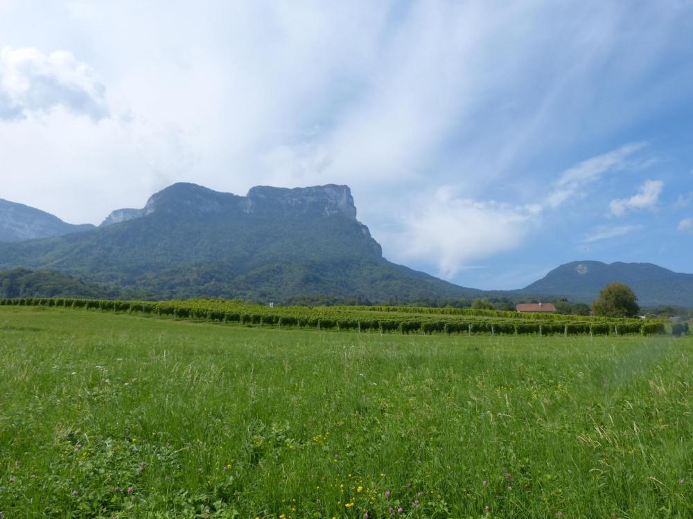 Le mont Granier vu depuis la route d'accès au col du même nom depuis Chapareillan