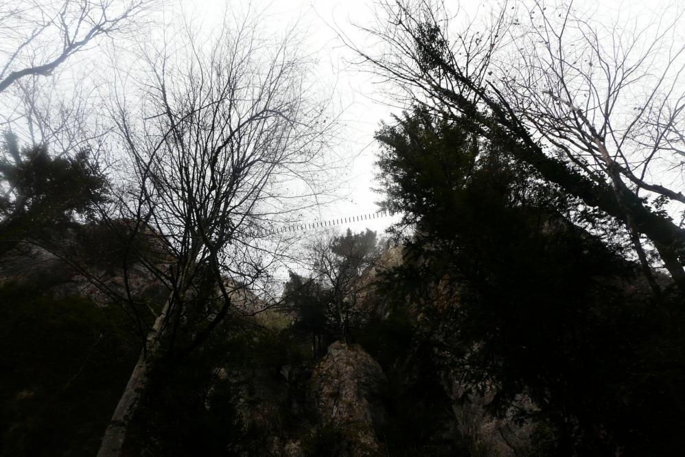 La grande passerelle vue de dessous