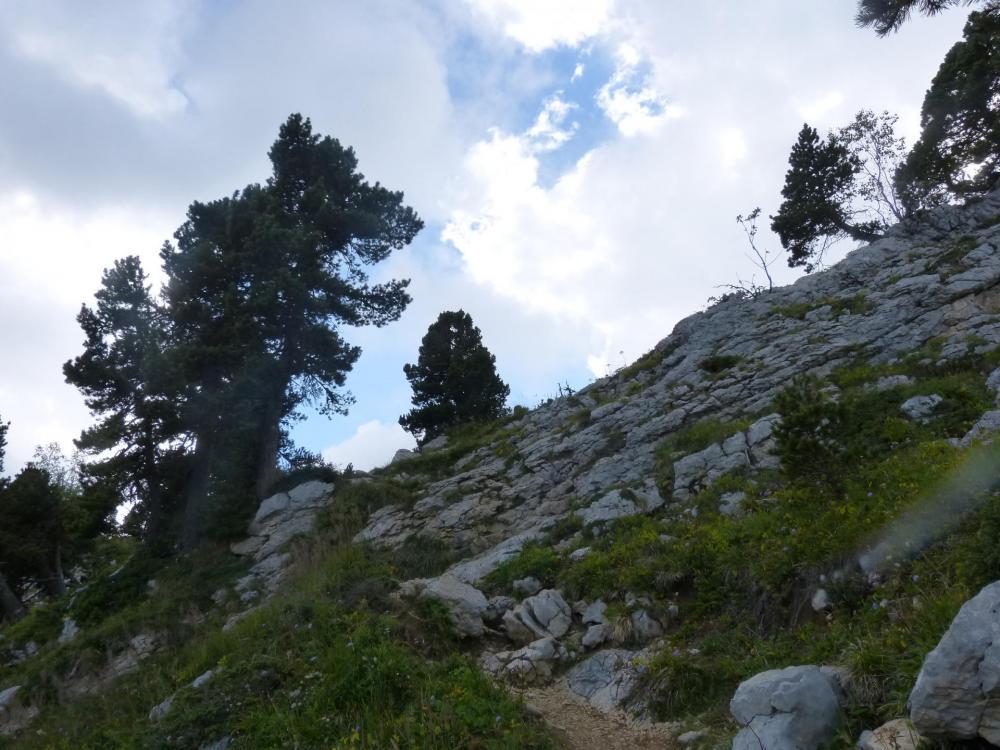 le sentier remonte un peu juste après le col sans nom - altitude 1840 m.