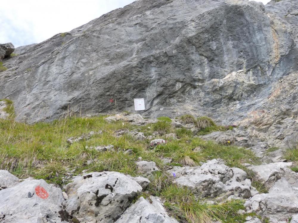 Départ de la via ferrata du Golet de la Trouye, le câble méne au sommet avec quelques interruptions exposées !
