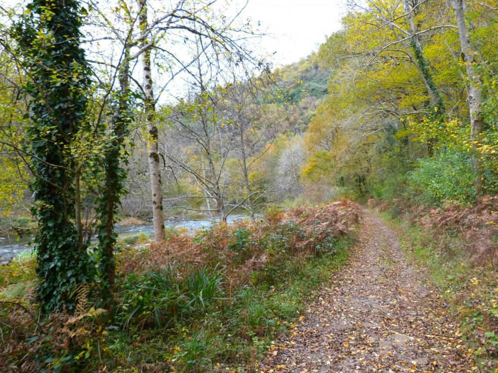 Chemin d' accès de la via de Bor et Bar le long de l' Orb