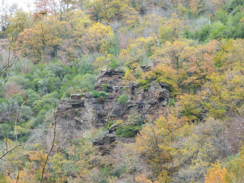 Rocher du Gorb (départ de la tyrolienne)