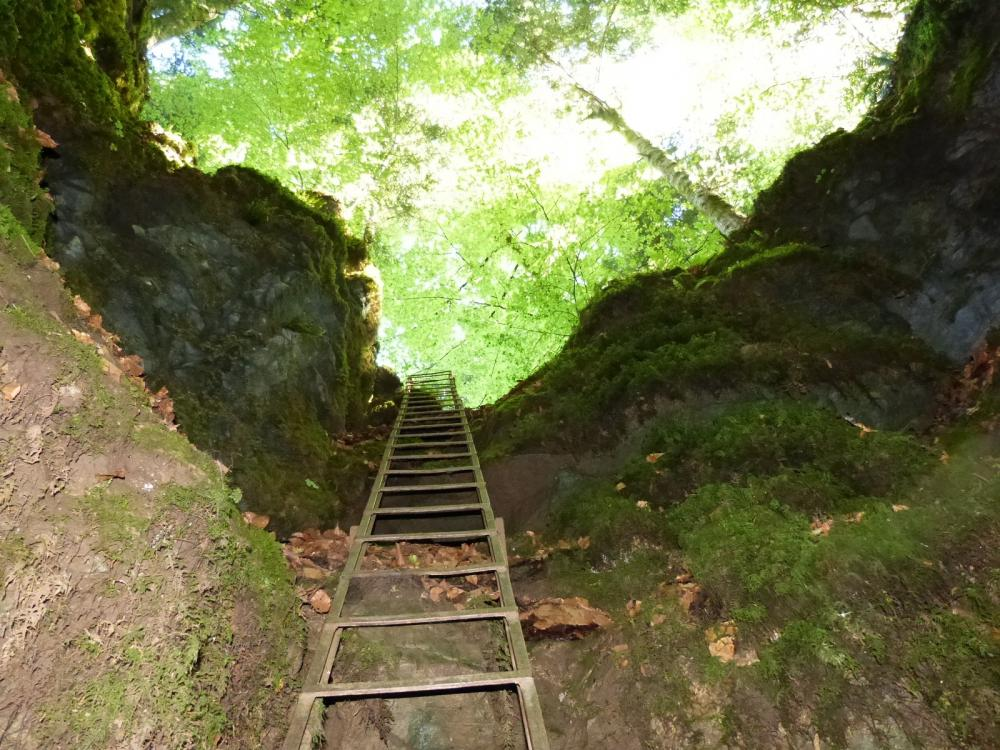 l' échelle de descente de la Baume du Mont à Reugney vue depuis le bas