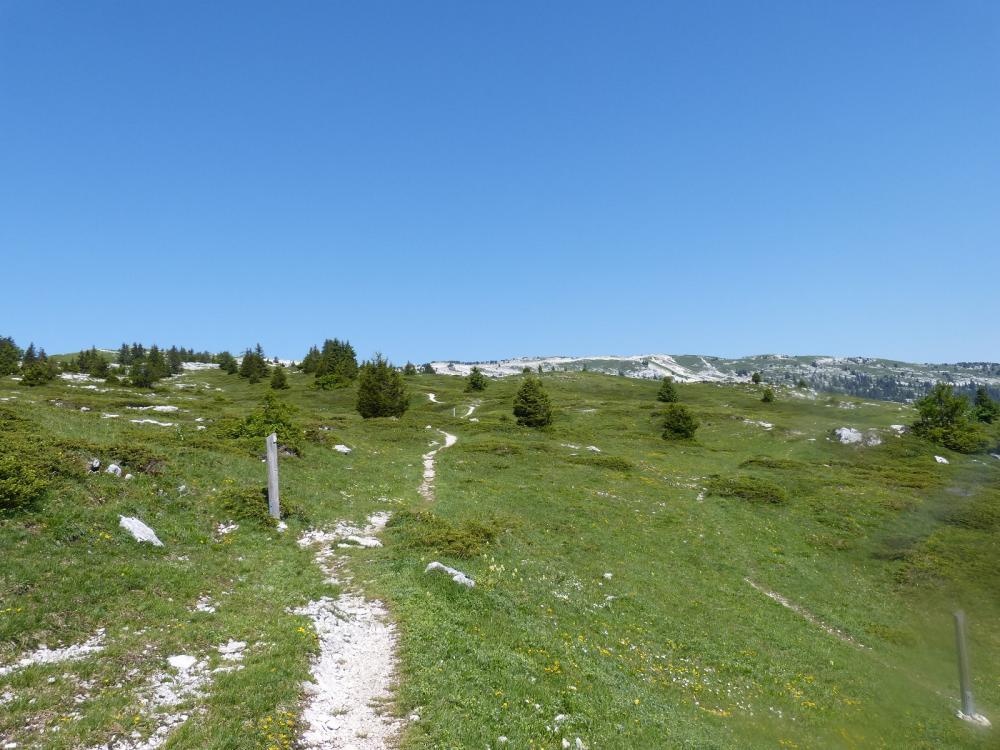 Sentier des Tannes, en direction du sommet du Margériaz depuis le Grand Rafou