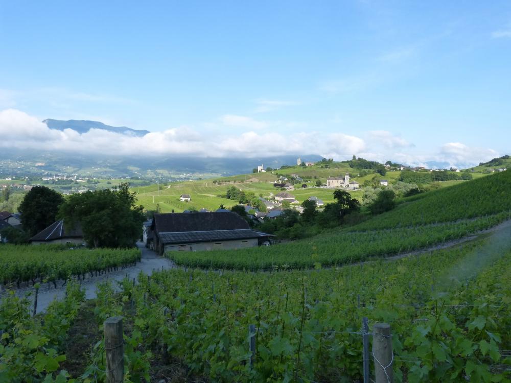 En montant dans les vignes,vue sur le village de Chignin et ses environs