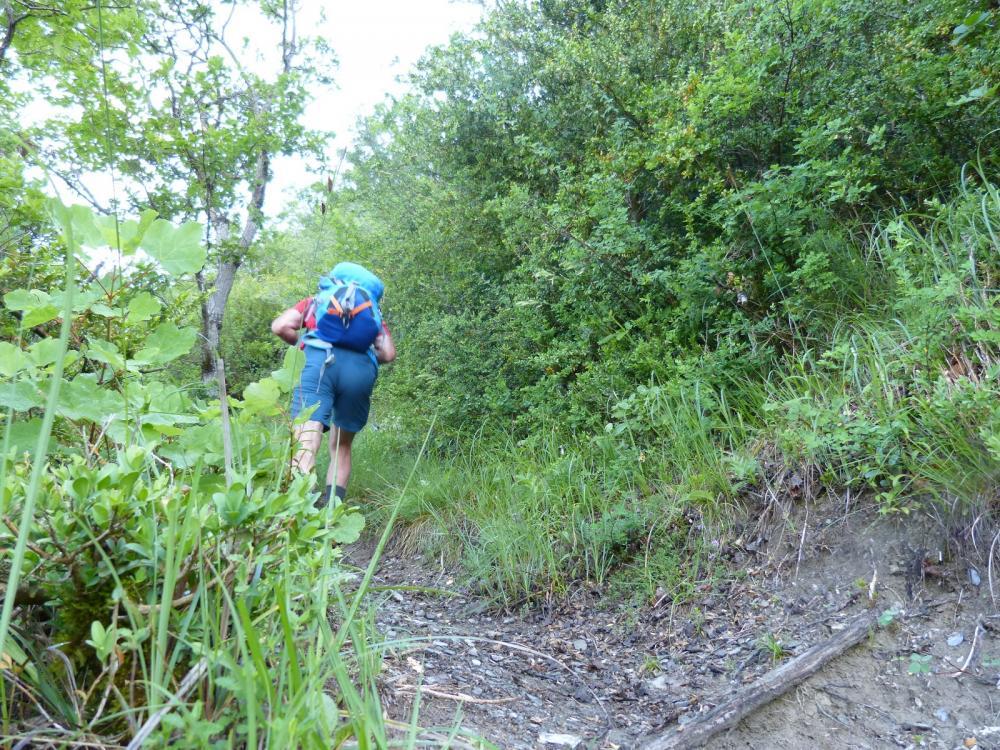 La montée est rude depuis les vignes de Chignin vers le roc de Tormery