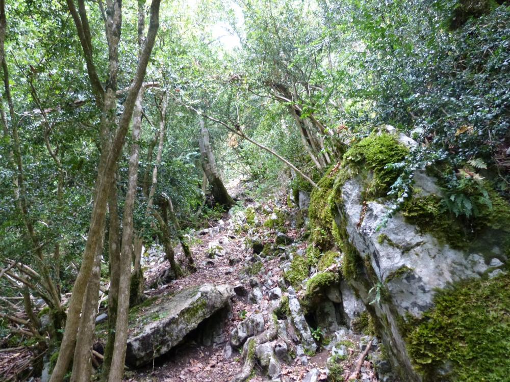 Descente accidentée du trou de l' Ermite vers Chignin