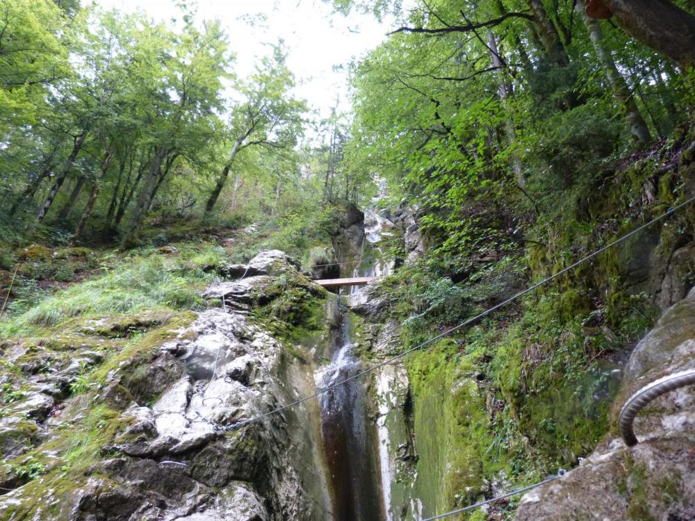 Pont de singe et poutre dans le début de la via ferrata de la cascade des Nants