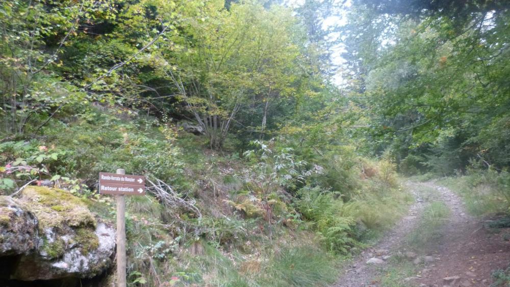 Chemin de descente en forêt vers le secteur 2 de la via ferrata , la rivière Ance, le départ de la tyrolienne et le secteur 1 de la passerelle.