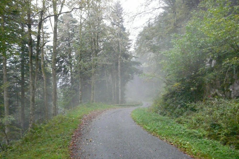 à mi montée du ballon de Servance, le brouillard s'installe !