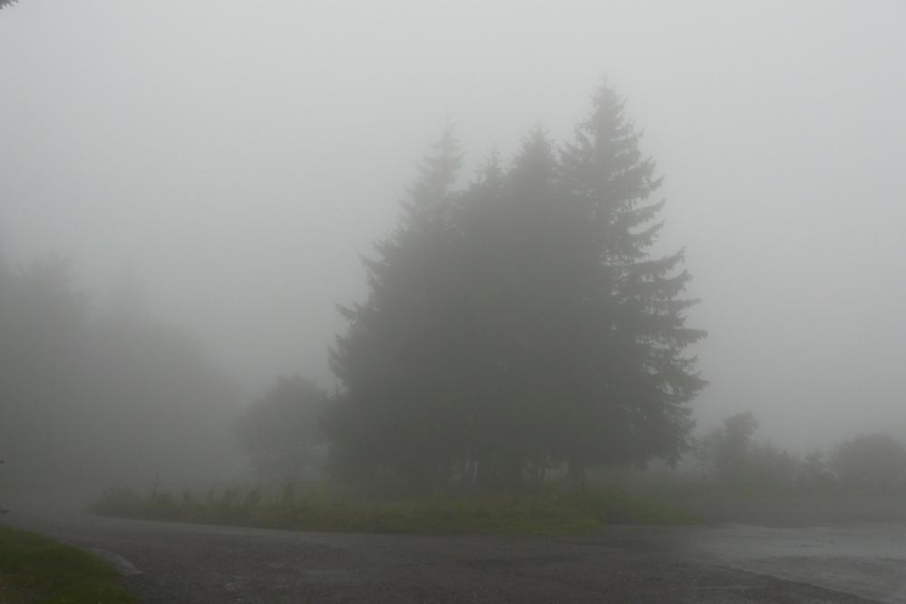 Brouillard dense vers le sommet du ballon de Servance (88)