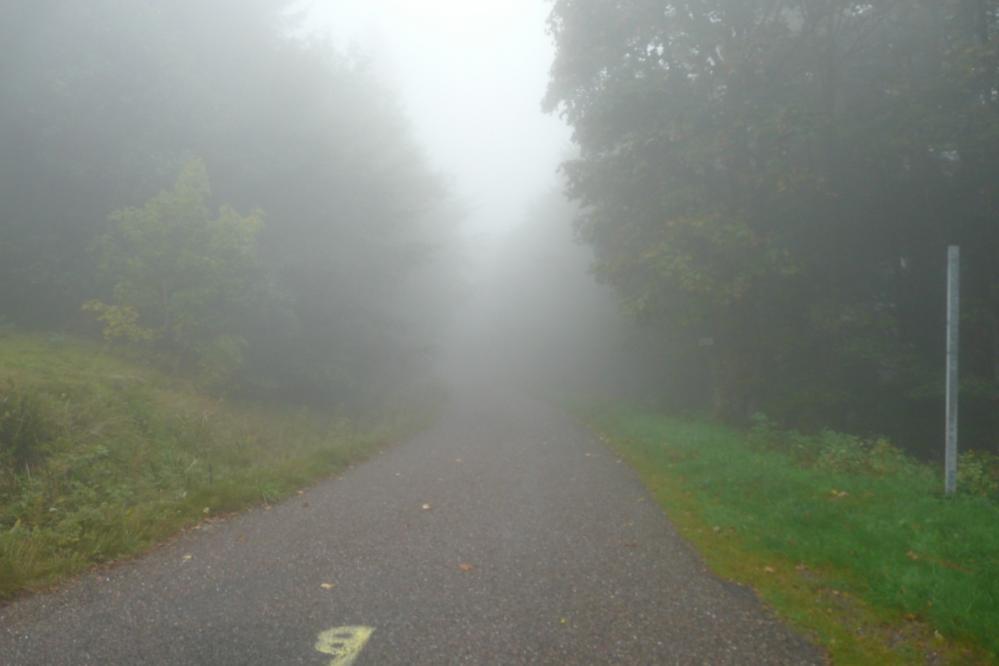 Descente du ballon de Servance dans le brouillard ...avant la pluie !