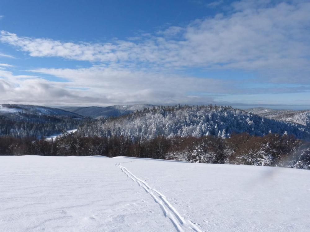 Vue sur les piste de La Bresse Hohneck depuis le refuge de Sotré