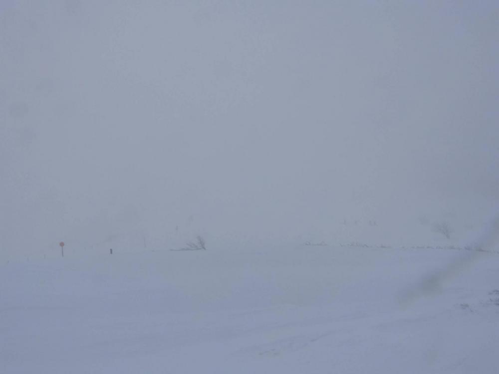 Visibilité 50 m, vent et neige, l' orientation ne se fait plus qu' avec mon application iphigenie !