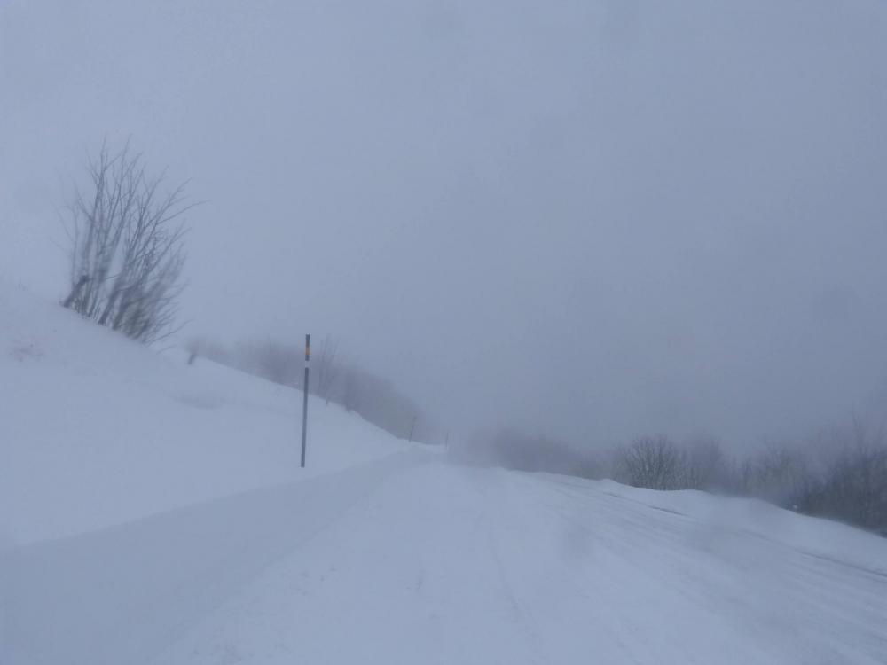 Par la route des Crêtes, je rejoins le haut des pistes de la station de La Bresse Hohneck