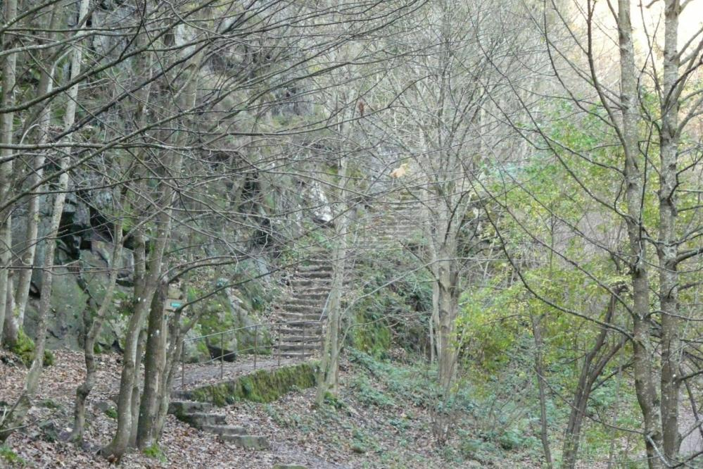 l' escalier qui mène au chemin qui mène au barrage de Planfoy