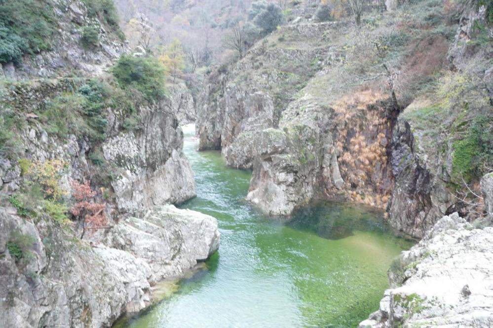 l' Ardèche vue depuis la rive gauche