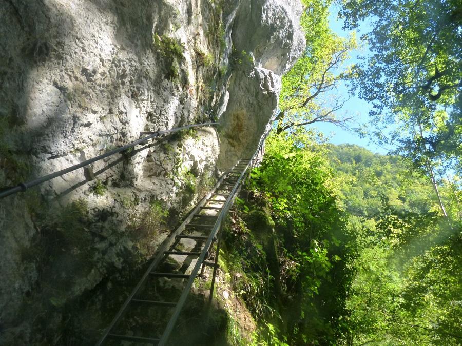 L ' échelle d' accès à la grotte des Faux Monnayeurs