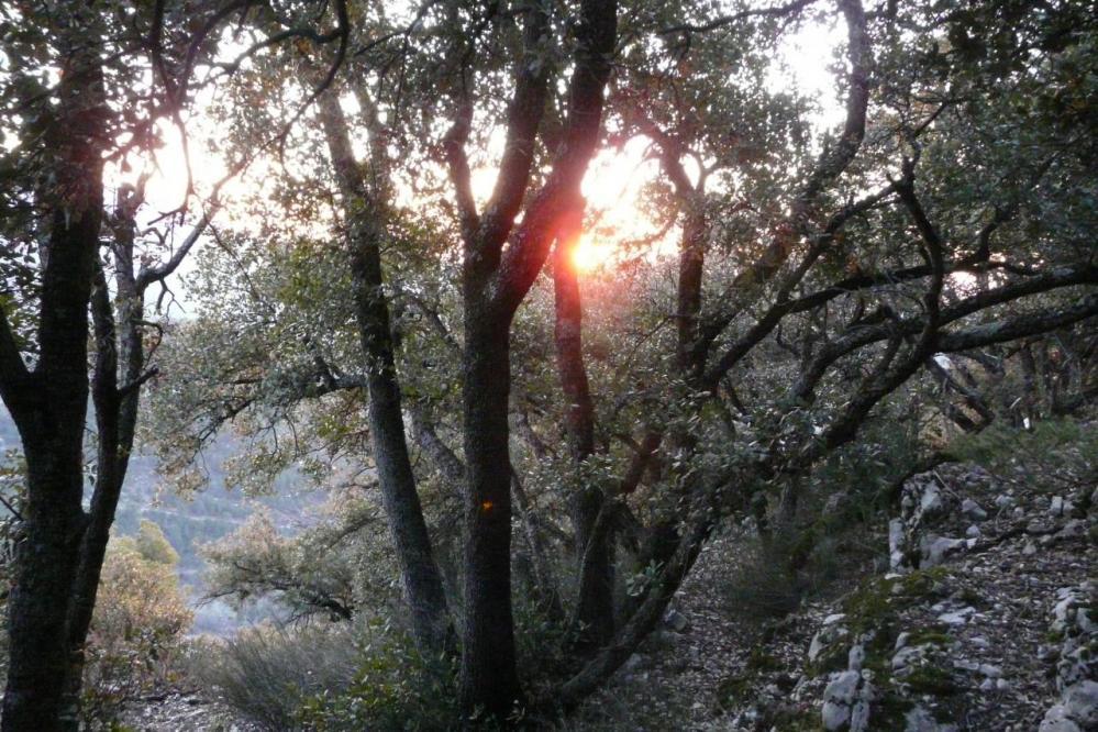 les reflets du soleil couchant