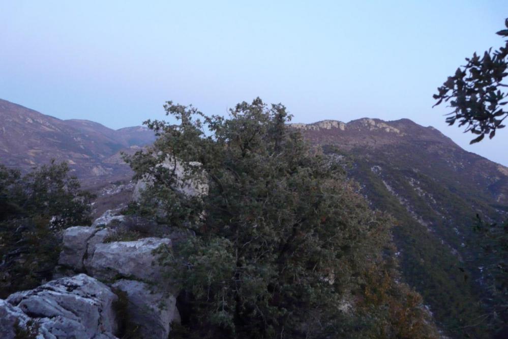 la crête du rocher St Julien à Buis les Baronies