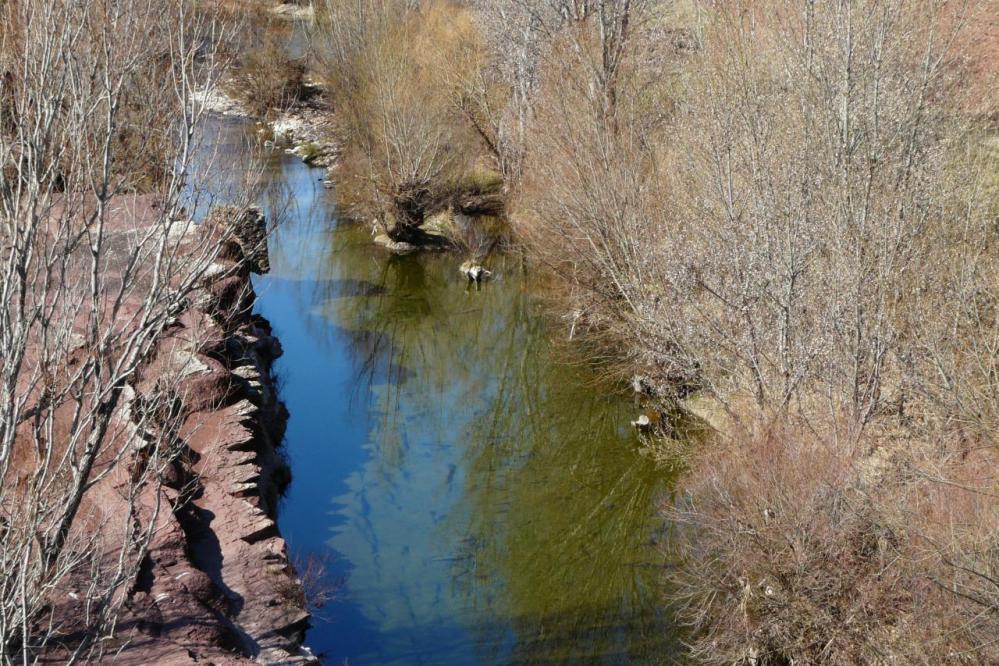 un des cours d' eau alimentant le salagou