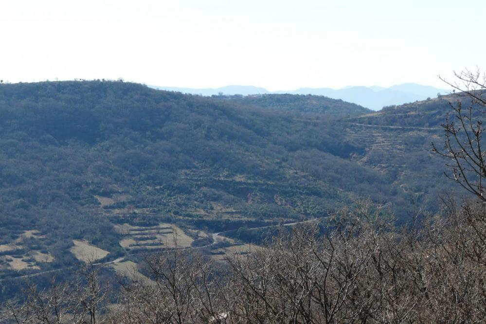 la vallée du Salagou