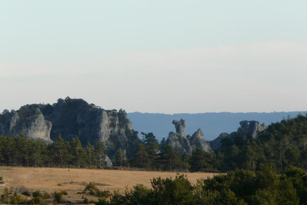 Une partie des rochers ruiniformes de Montpellier le vieux vus depuis la route d' accès
