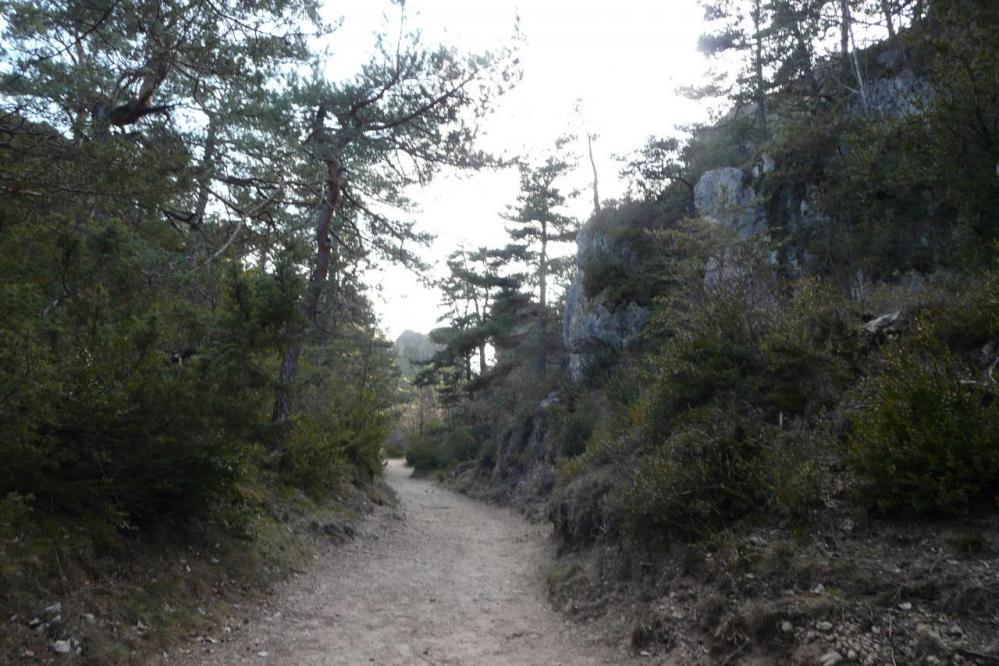 site de Montpellier le vieux,sentier rouge