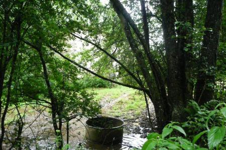 Le ruisseau aérien à proximité de l' ancienne étable