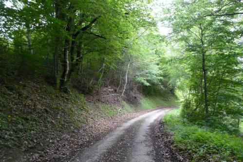 Chemin/route vers La Bertinière