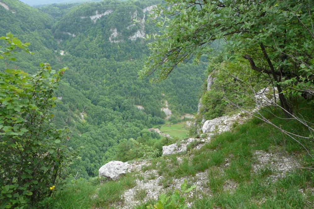 Belle vue depuis le plateau sur le vallon de l' Albarine