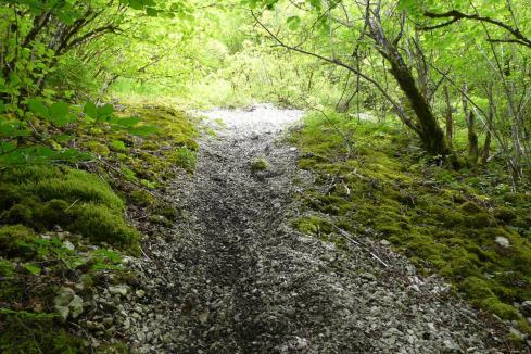 le chemin qui mène à la cascade au départ du moulin de Charabotte