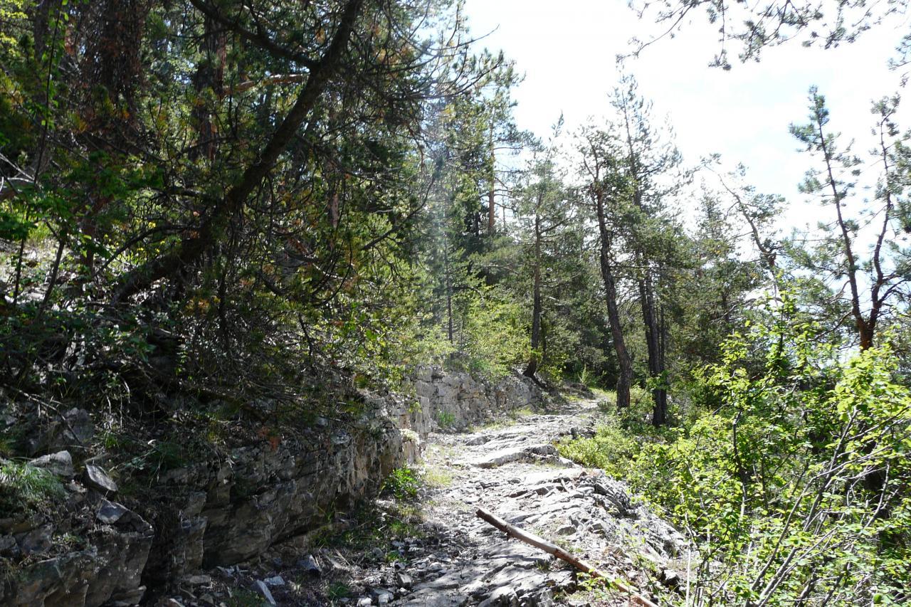 Chemin de montée agréable dans sa première partie vers Val des Prés