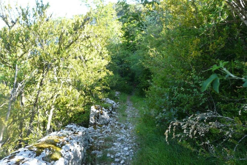 le sentier qui méne aux vestiges de la Charmatte