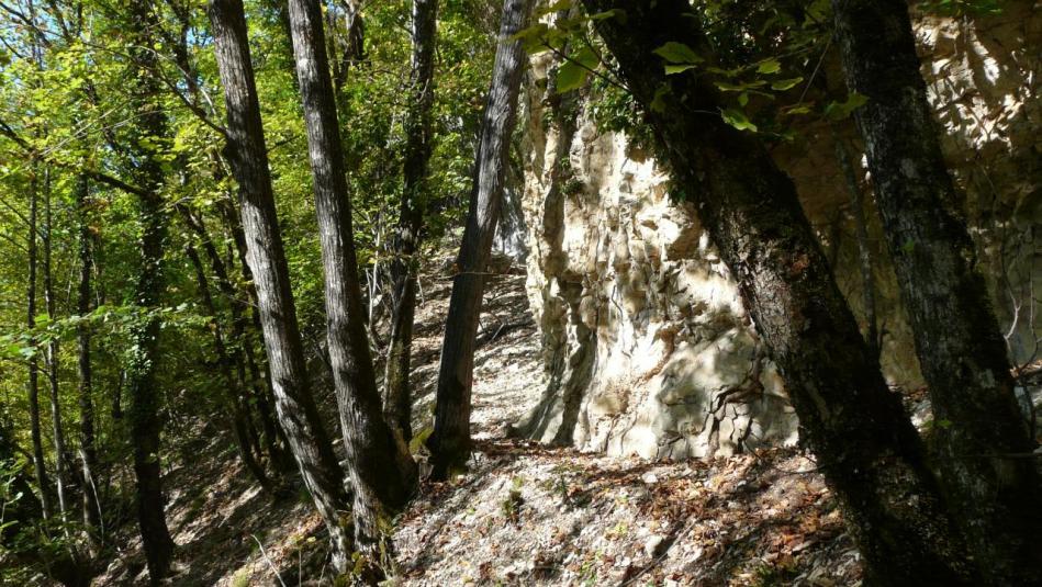 le pied de la falaise est rejoint après une montée épique !
