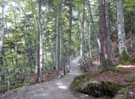 le sentier d' accés de la grotte de la Luire