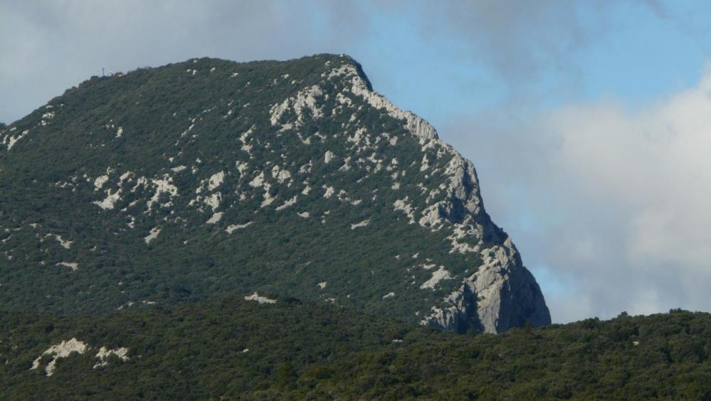 Le sommet du pic St Loup côté boisé