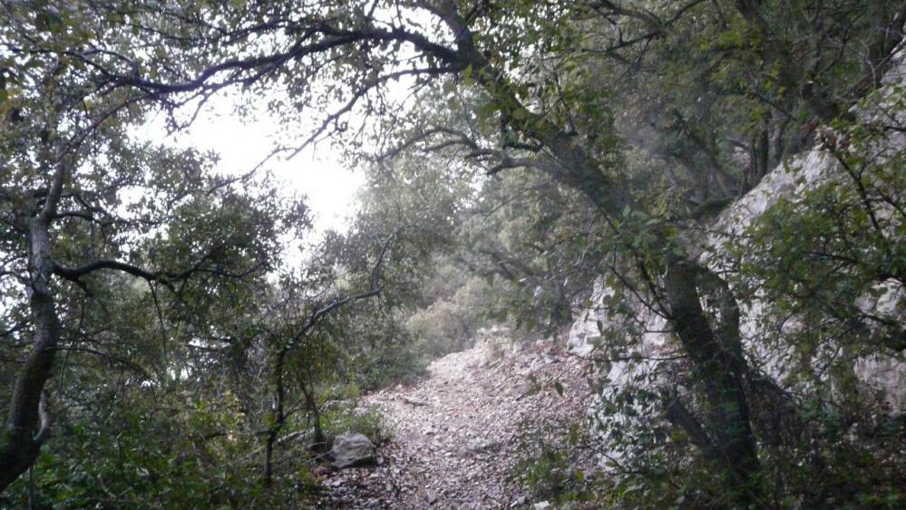 le sentier de montée au château de Viviourès